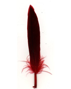 Duck Cosse Feathers - Red