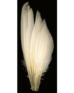 Duck Wing Fan Trim - White