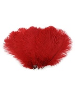 Ostrich Feather Drabs