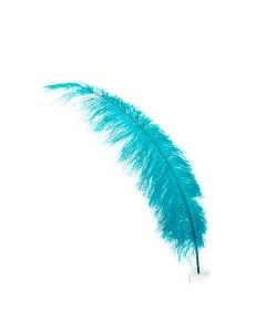 Ostrich Feathers-Spads Selected - Dark Aqua