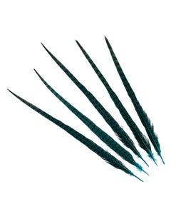 "Ringneck Pheasant Tails 20-24"" Dyed -5pcs - Dark Aqua"