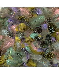 Guinea Plumage Mix Dyed - Spring Mix
