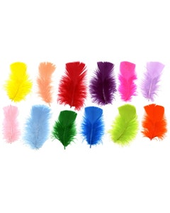Loose Turkey Plumage Mix Dyed - Assorted Mix