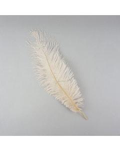 Ostrich Feathers-Damaged Drabs - Beige