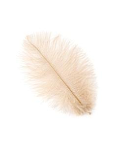 "Ostrich Feather Drabs 4-8"" - 12pcs Beige"