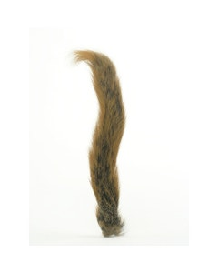 Squirrel Tails; Whole Tails - Natural Red