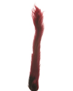 Calf Tails-Assorted Tails - Fluorescent Red