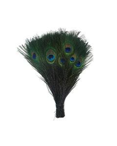 Peacock Tail Eyes Stem Dyed - Black