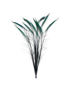 Peacock Swords Stem Dyed - Black