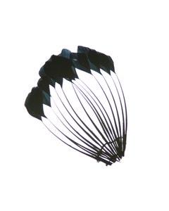 Duck Stripped Center Fan Trim - Black