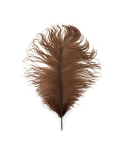 """1 PC PKG Ostrich Feather Drabs Dyed 17"""" - Brown"""