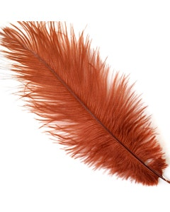 "Ostrich Feathers-Drabs - 9-12"" - 12 pcs [Premium Top Quality] Copper"