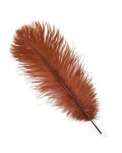 Ostrich Feather Drabs - 12 pieces 13-16 inch - Copper