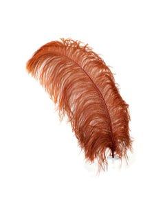 Ostrich Prime Femina Feathers - 6pc - 17 - 25 Inches - Copper
