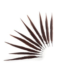 Pheasant Tails Assorted Bleached - Brown