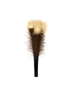 """Peacock Tail Eyes Tipped - Brown/Eggshell - 25 -40"""""""