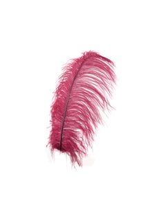 """1 PC PKG Ostrich Feather Drabs Dyed 17"""" - Burgundy"""