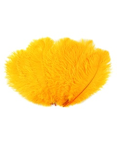 Ostrich Feather Drabs - 1/4 pound (approx. 60 pieces) 13 - 16 inch - Gold