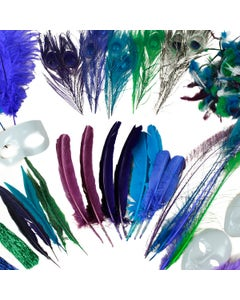 FEATHER CRAFTER KITS - PEACOCK ASSORTMENT
