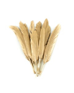 Gilded Duck Cosse Feathers Gold
