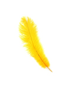 Ostrich Feathers-Damaged Drabs - Gold