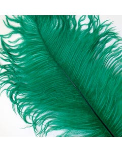 Ostrich Feathers-Drabs Selected - Emerald