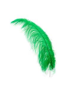 Ostrich Feathers-Prime Femina Emerald