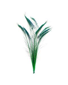 Peacock Swords Stem Dyed - Kelly