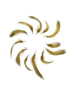 Duck Plumage Mallard Feathers - Olive