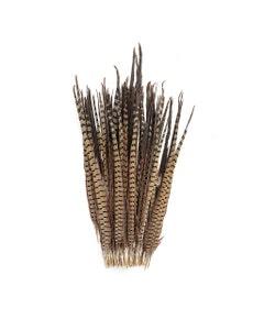 """Ringneck Pheasant Tails - Natural - 20 - 24"""""""