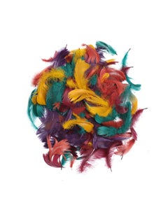 Loose Goose Coquille Mix Dyed - Autumn Mix