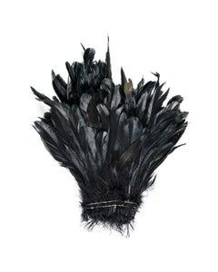 Rooster Coque Tails-Half Bronze - Black