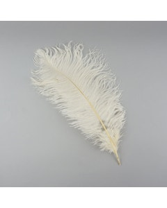 Ostrich Feathers-Damaged Drabs - Ivory