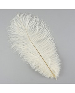 Ostrich Feather Drabs - 12 pieces 13-16 inch - Ivory