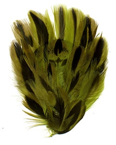 Duck Plumage Small Feather Pad - Lime