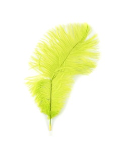 Ostrich Feathers-Damaged Drabs - Lime