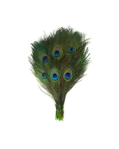 Peacock Tail Eyes Stem Dyed - Lime