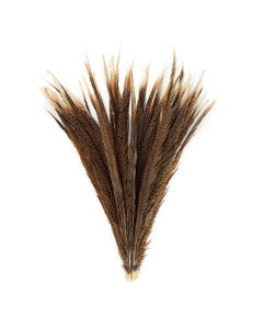 Natural Golden Pheasant Tail Center Feathers, 20 inches & up, 100 pieces, 1st Quality Feathers