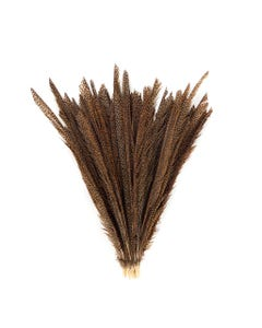 Natural Golden Pheasant Tail Center Feathers, 20 inches & up, 100 pieces, 2nd Quality Feathers