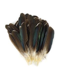 Goose Favion Feathers Natural