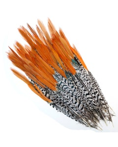"""Lady Amherst Red Top Tails - Natural-8-12"""""""