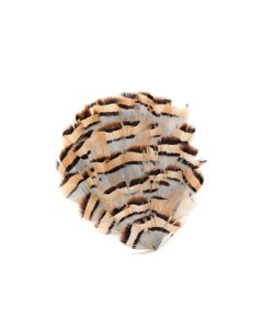 Partridge Plumage Feather Pad - Natural