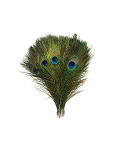 """Peacock Tail Eyes  Small and Large Natural - 8 -15"""""""
