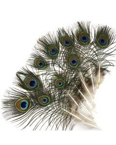 ZUCKER Peacock Eye Feather Craft-Home Decor 25pcs