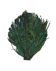 Peacock Sword Feather Pad - Natural