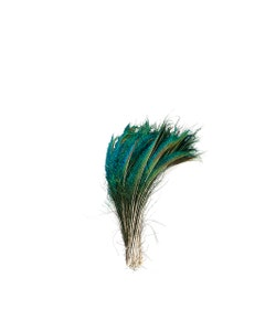 """Peacock Feather Swords  Right Wing 12-20"""" - Natural"""