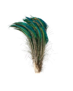 Peacock Feather Swords Natural