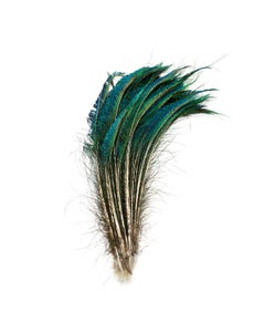 Peacock Feather Swords Natural - Natural - Approx 15-25 inches - 25 PCS