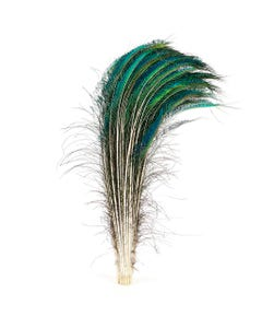 """Peacock Feather Swords Natural - RT - 25 - 30"""""""