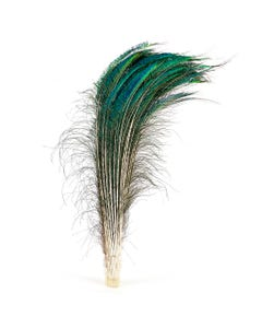 """Peacock Feather Swords Natural - 30 - 40"""""""